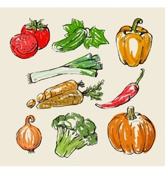 Color vegetables vector
