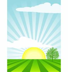 Spring cultivated landscape vector