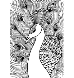 Decorative ornamental peacock doolle style vector