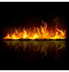 Burning fire flame vector