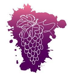 Watercolor of grapes vector