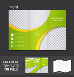 Brochure template tri fold vector