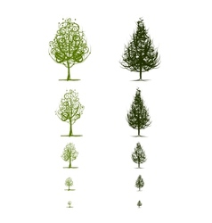 Stages of growing tree for your design vector