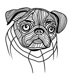 Dog pug head vector
