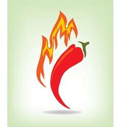 Red hot pepper vector