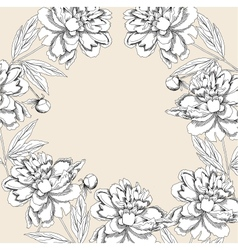 Background with white peony vector