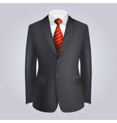 Male clothing dark striped suit with red tie vector