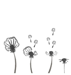 Watercolor dandelions abstract flower background vector
