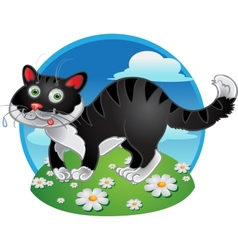 Black fun cat on color background vector