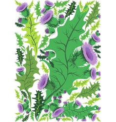 Beautiful decorative border of flowers thistle vector
