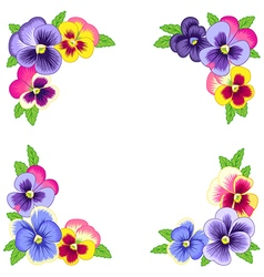Pansy corners frame vector