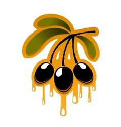 Bunch off olives dripping olive oil vector