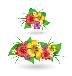 Tropical flowers decor elements vector