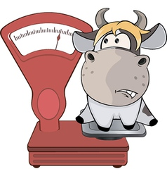 A small cow and weighing scale cartoon vector