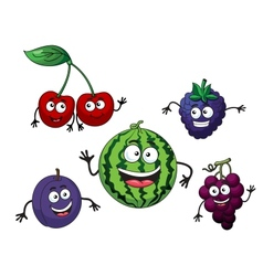 Cherry watermelon grape bilberry and plum vector