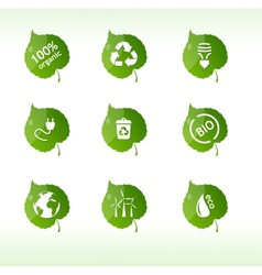 Eco labels isolated vector