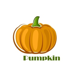 Orange pumpkin vegetable in cartoon style vector