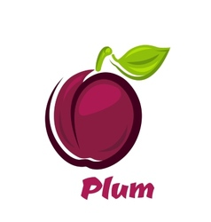 Fresh plum fruit in cartoon style vector