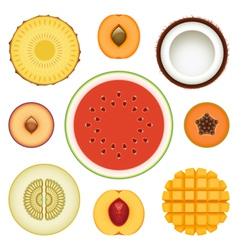 Fruit halves set vector