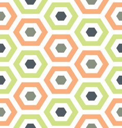 Melon and green hexagon hive vector