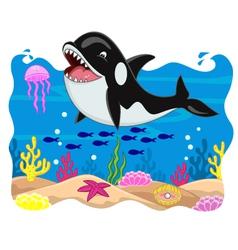 Killer whale cartoon vector