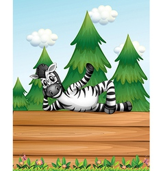 A zebra above the wooden signboard vector