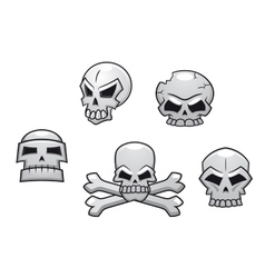 Halloween or pirate themed skull set vector