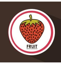 Fruit seal vector