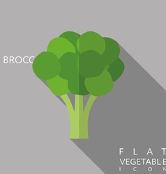 Broccoli flat icon with long shadow vector