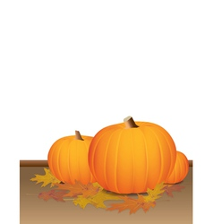 Autumn pumpkins and colorful leaves vector