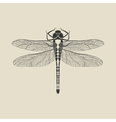 Black dragonfly insect vector