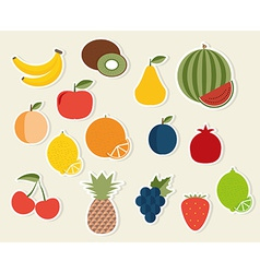 Fruit icon the image of fruits and berries symbol vector