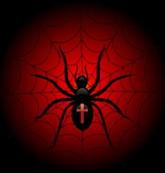 Spider on the web vector