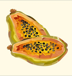 Papaya polygon vector