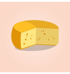 Wheel of cheese vector