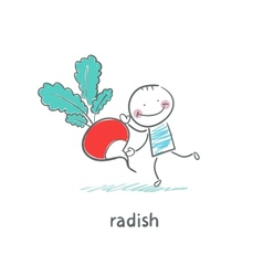 Radishes and people vector