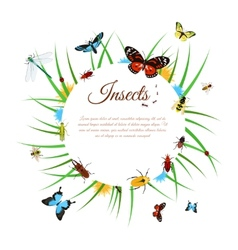 Insects background vector