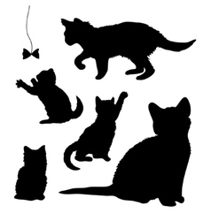 Playing kittens vector