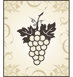 Retro engraving of grapevine - vector