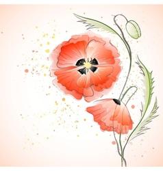 Red poppy bouquet vector