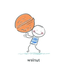 Walnut and people vector