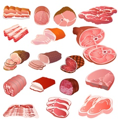 Set of different kinds of meat vector