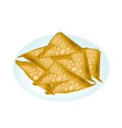 Deep fried wonton in a white plate vector