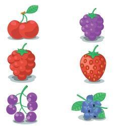 Collection of berrys vector