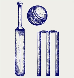 Set equipment for cricket vector