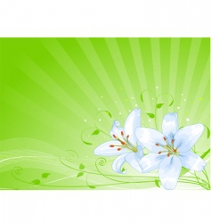 Easter lilies background vector