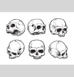 Skulls hand drawn set 1 vector
