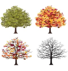 Different seasons of art tree vector