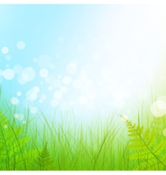 Green grass meadow vector