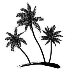 Coconut tree vector